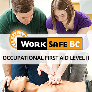 Occupational First Aid Level 2